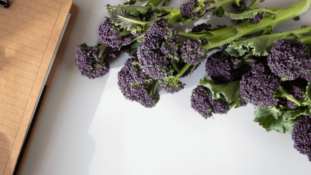 Purple sprouting broccoli comes into season in February